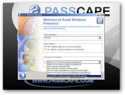password reset windows